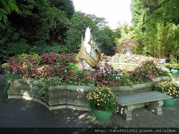 0t加拿大維多利亞布查花園 (42).jpg
