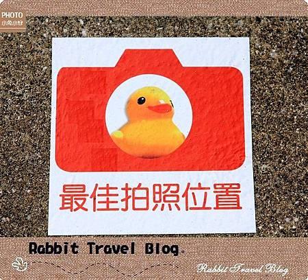 風車黃色小鴨 26