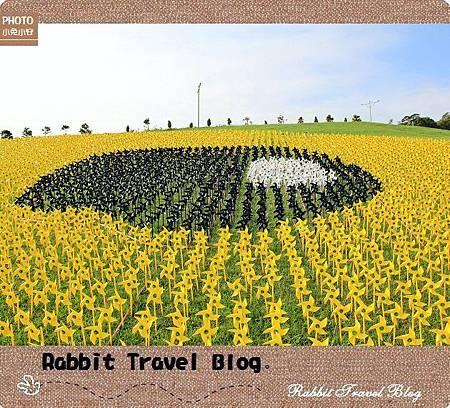 風車黃色小鴨 14