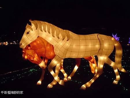 大漠-夫妻馬1.jpg