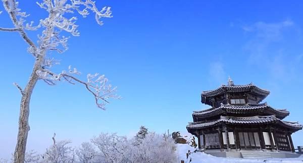 冬5.jpg