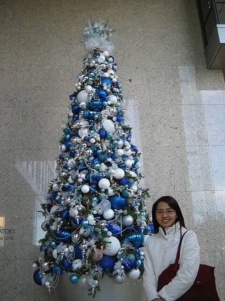 學校對面一間辦公大樓內的聖誕樹