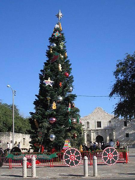 Alamo前的聖誕樹
