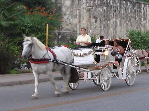 路上可以攔馬車遊城唷