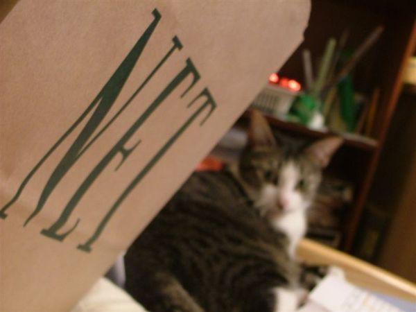 NET年度代言貓