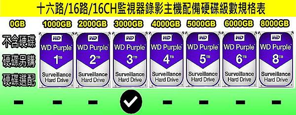 台中監視器材批發-十六路監視錄影主機硬碟級數表-16路硬碟錄像機.jpg