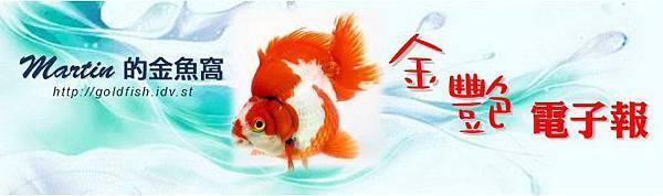 金魚電子報刊頭突1