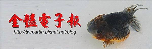 水魚電子報頭圖1.jpg