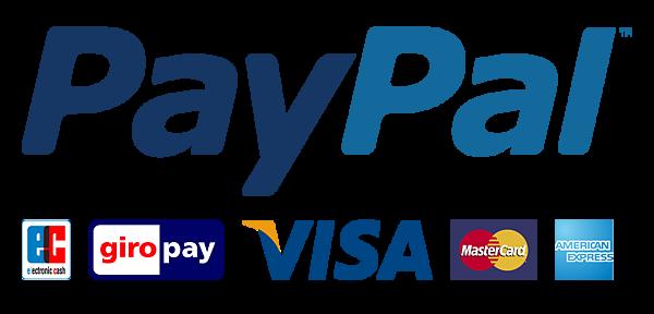 paypal_big.png