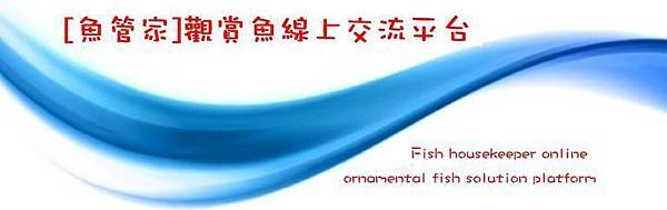 魚管家刊頭1.jpg