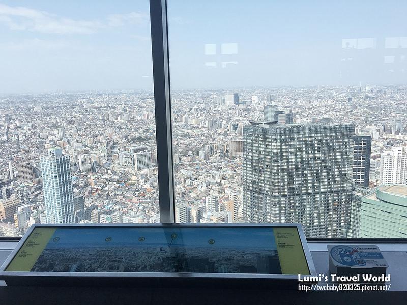 東京都廳觀景台14
