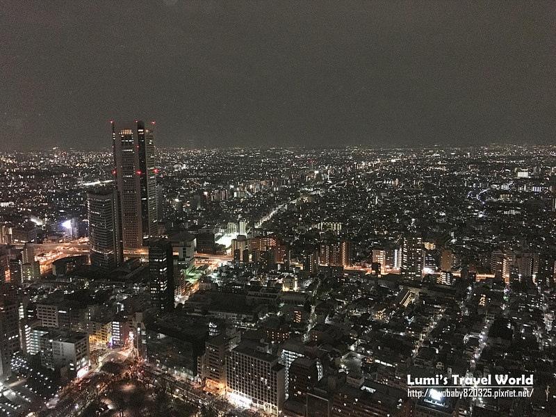 東京都廳觀景台20