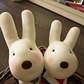 8/17/2013那天,一隻屬於你的Rabbit:Amélie,將是時間分配給我們的小小收穫。
