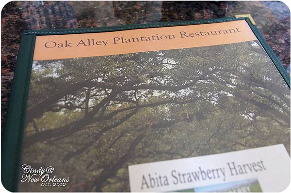 Oak Alley restaurant-01