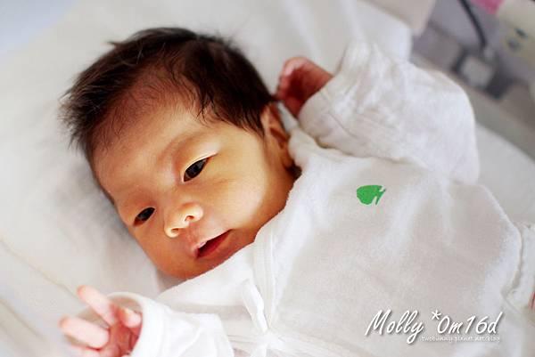 Molly-0m16d-08