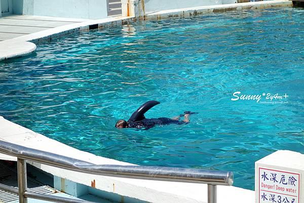 Sunny-2y4m-027.jpg