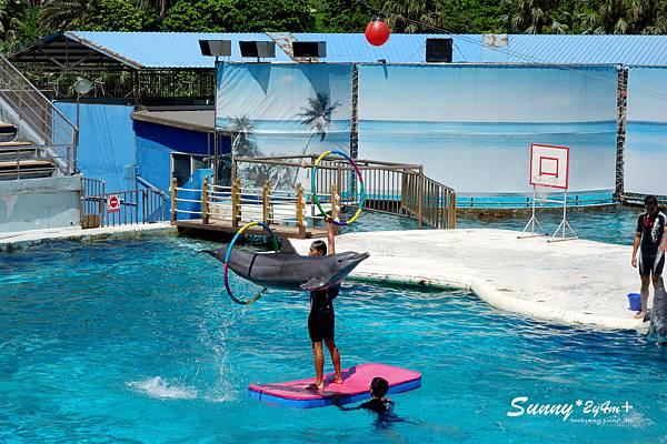 Sunny-2y4m-036.jpg