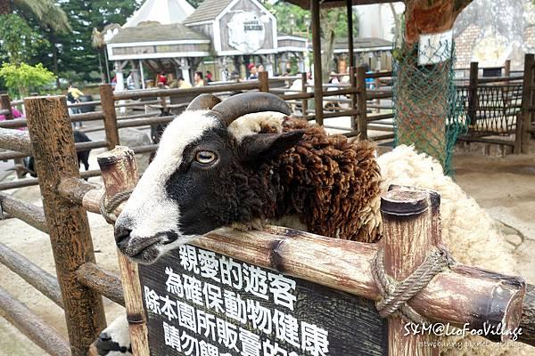 六福村-12