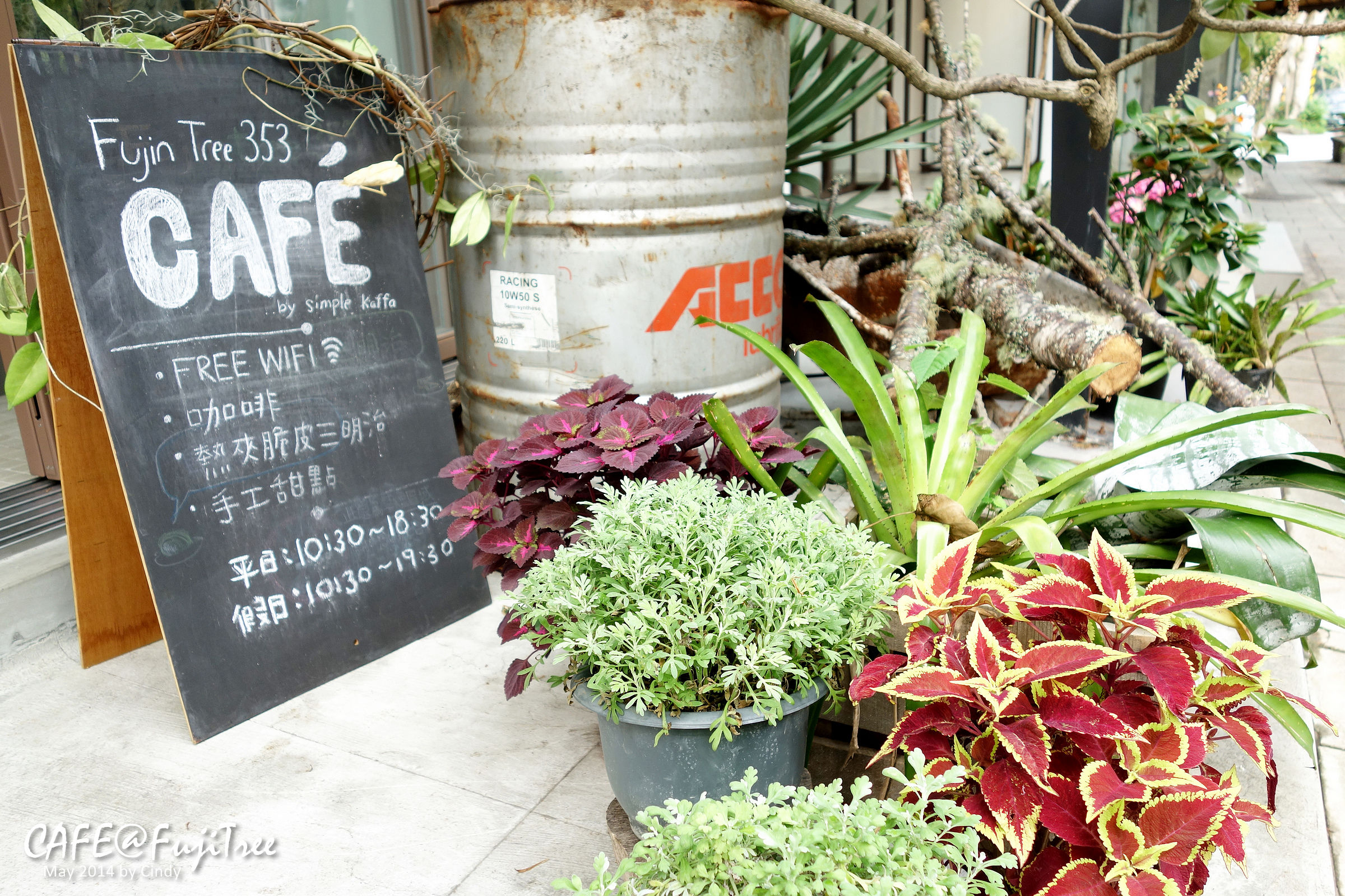 Fuji Tree-03.jpg