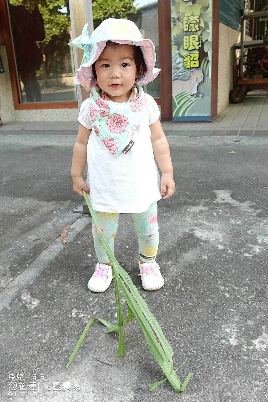 1011-花蓮-兆豐農場-21.jpg