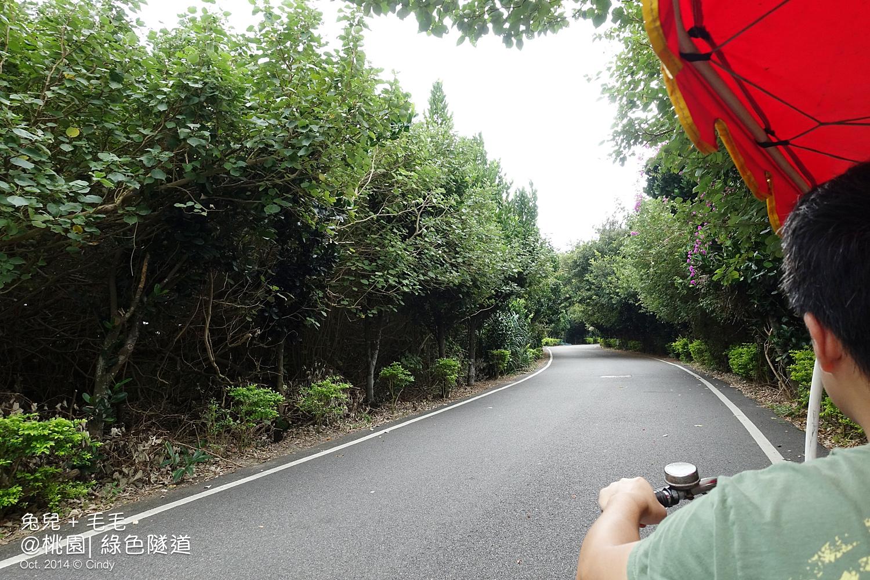 2014-1101-綠色隧道-02.jpg