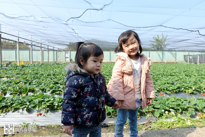 0117-關西採草莓-018.jpg
