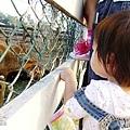 1121-大溪花海農場-23