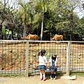 0314-新竹市立動物園-03.jpg