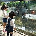 0314-新竹市立動物園-09.jpg