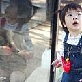 0314-新竹市立動物園-12.jpg