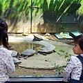 0314-新竹市立動物園-13.jpg