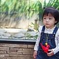 0314-新竹市立動物園-14.jpg