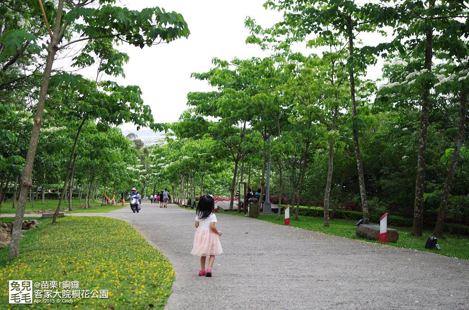 2015-0420-客家大院賞桐花-27.jpg