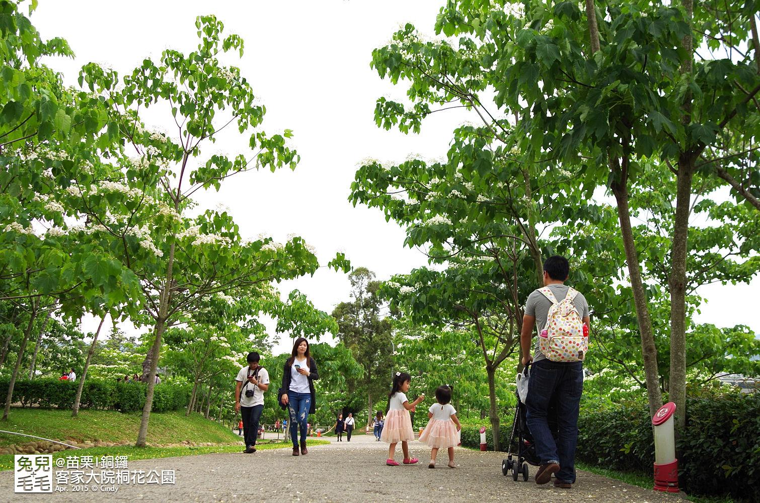 2015-0420-客家大院賞桐花-34.jpg