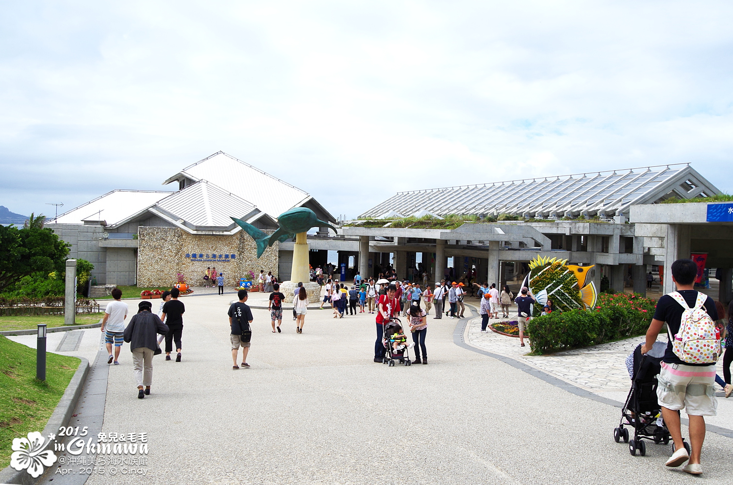 2015-0405-沖縄美ら海水族館-03.jpg