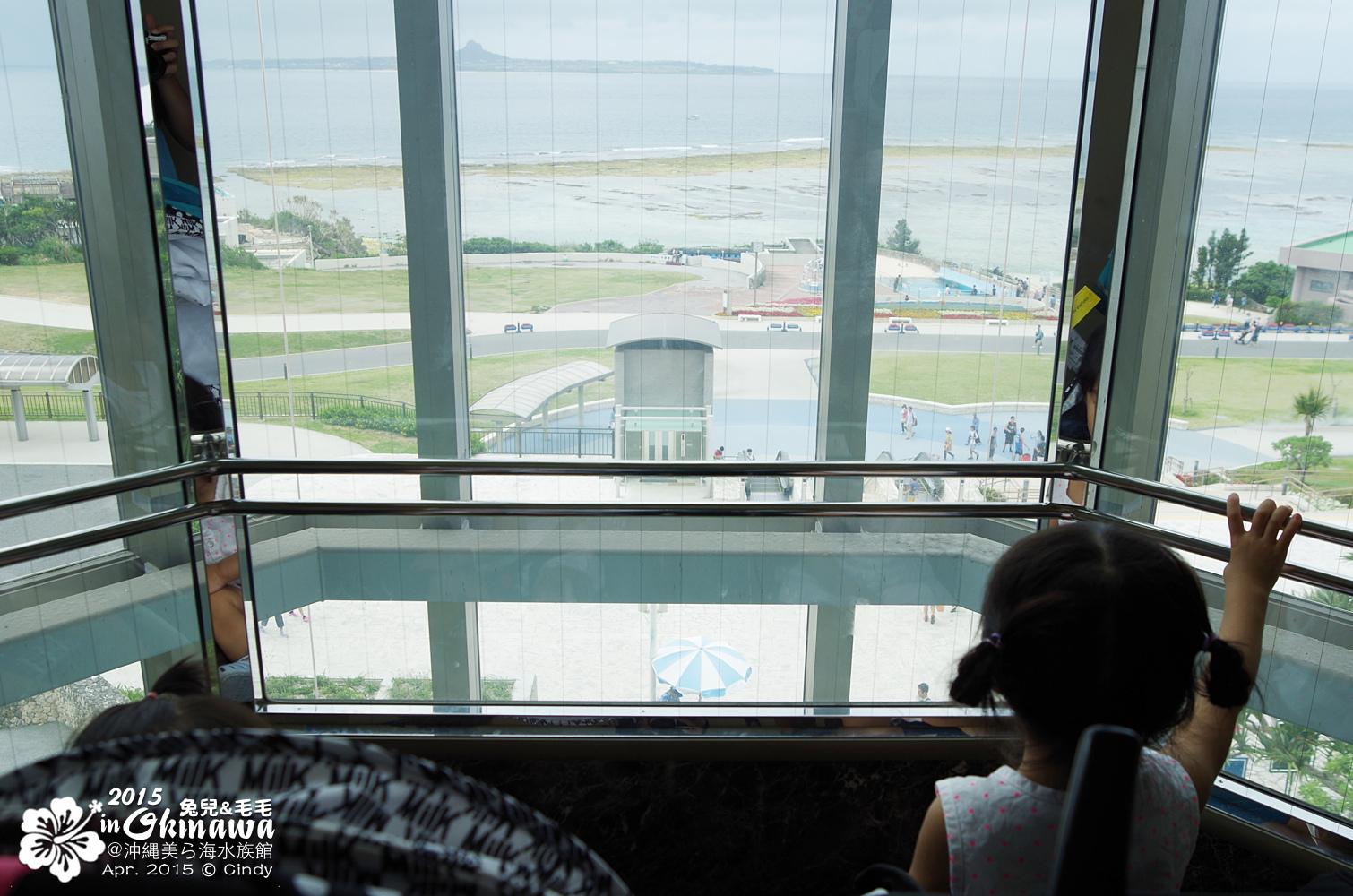 2015-0405-沖縄美ら海水族館-05.jpg