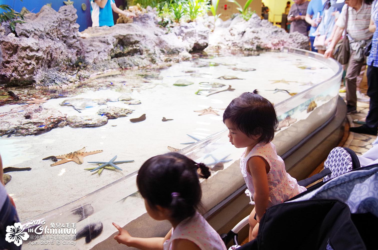 2015-0405-沖縄美ら海水族館-06.jpg