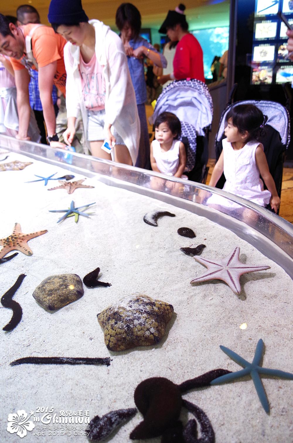 2015-0405-沖縄美ら海水族館-08.jpg