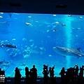 2015-0405-沖縄美ら海水族館-28.jpg