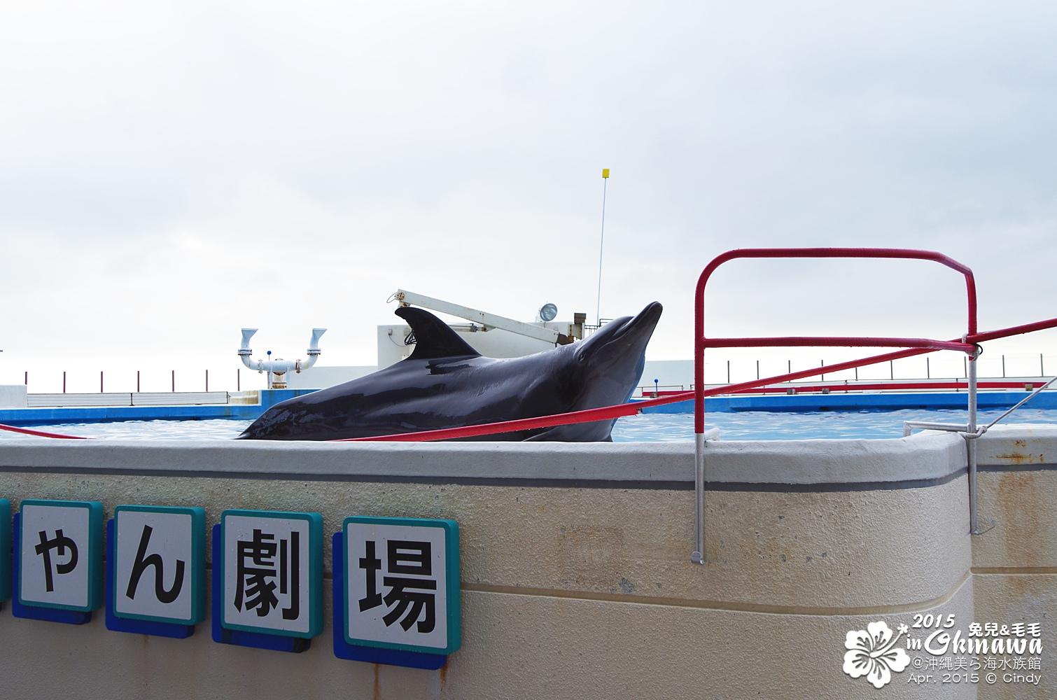 2015-0405-沖縄美ら海水族館-46