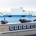 2015-0405-沖縄美ら海水族館-48