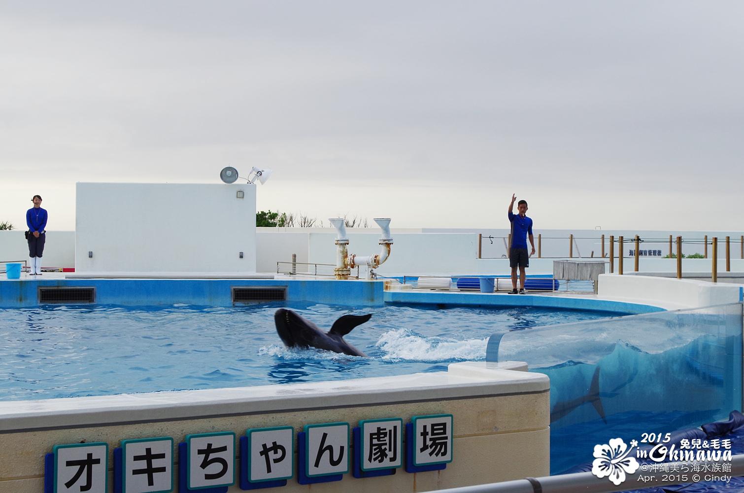 2015-0405-沖縄美ら海水族館-49