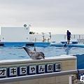 2015-0405-沖縄美ら海水族館-50