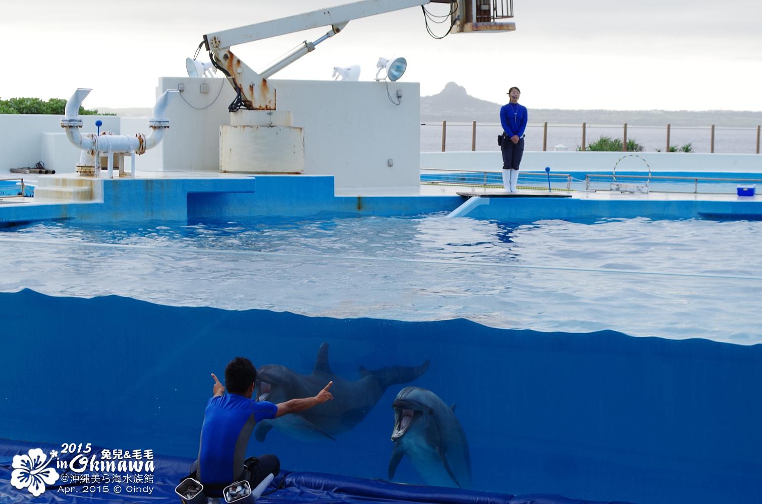 2015-0405-沖縄美ら海水族館-51