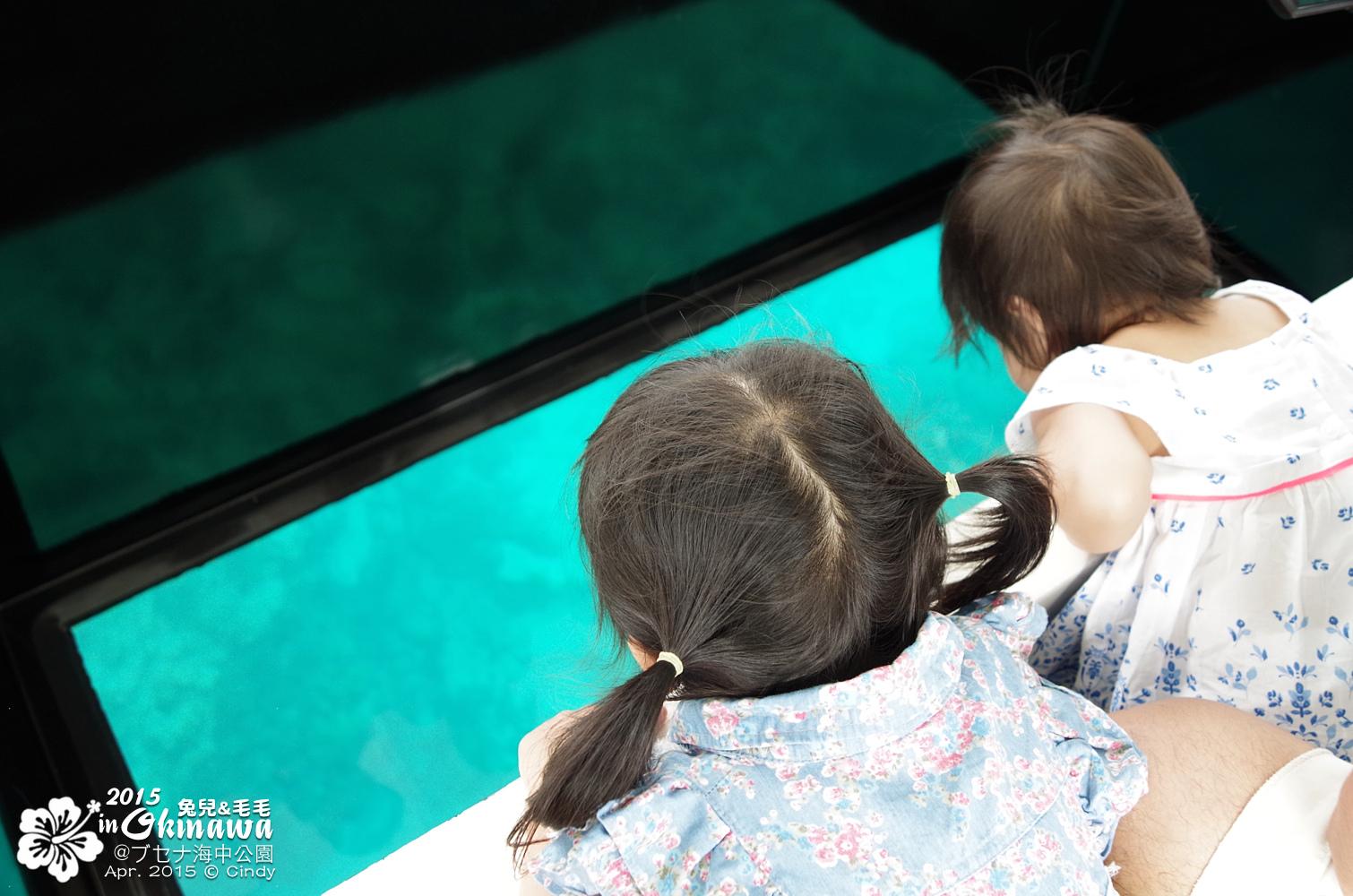 2015-0406-部瀨名海中公園-15.jpg