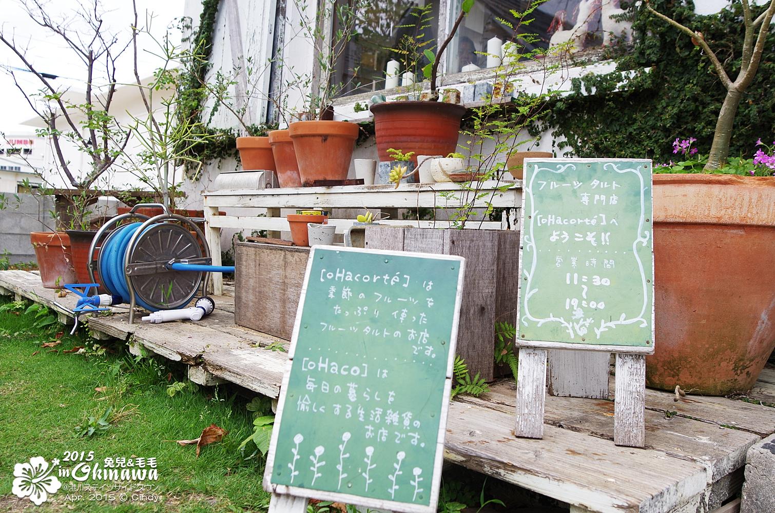 2015-0407-港川外人住宅-29.jpg