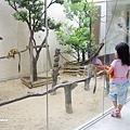 ザ・ビーチタワー沖縄-33.jpg