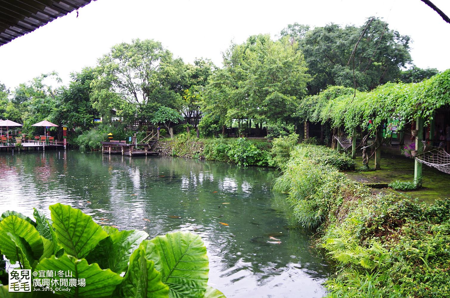 2015-0607-廣興農場-45.jpg