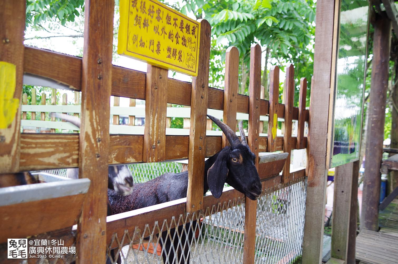 2015-0607-廣興農場-54.jpg