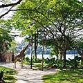 0218-Singapore Zoo-06.jpg